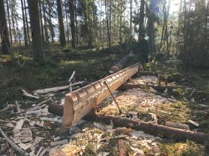 Frej Wike och Mattias Hallgren hugger fram en tro-hållbräda