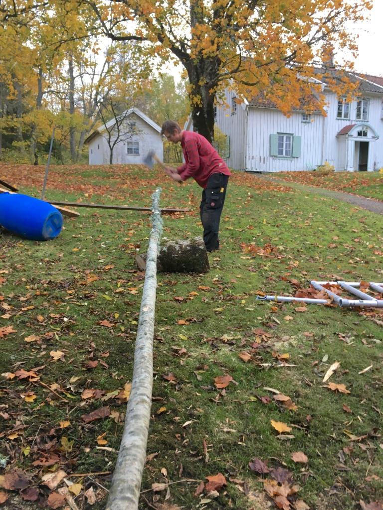 Mattias hugger till en sladda av ask som ska bli en vindsträva i långväggen